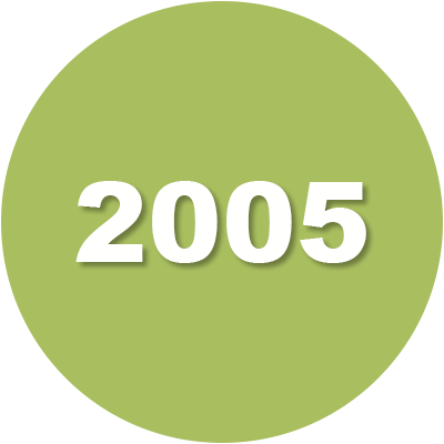 2005 Timeline Icon