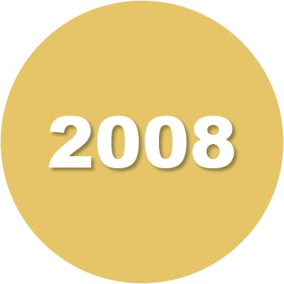 2008 Timeline Icon