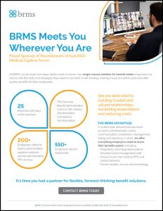BRMS 1 with border